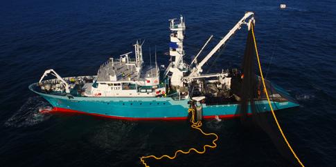 Desarrollo de planes de Eficiencia Energética en pesqueros