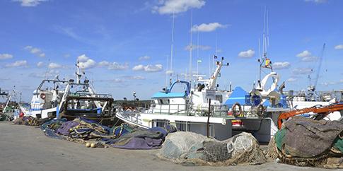 La Junta de Andalucía publica el marco regulador de las ayudas a la pesca sostenible