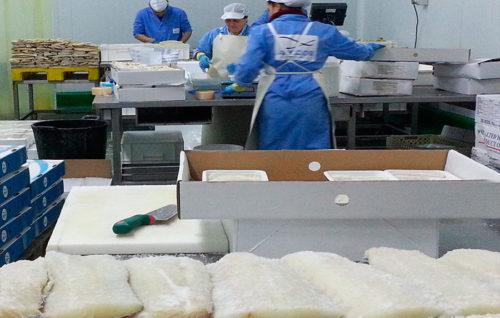 La UE acuerda aranceles autónomos para importaciones pesqueras en 2019 y 2020