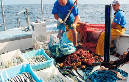 La Eurocámara dio luz verde al primer plan pesquero para el Mediterráneo occidental