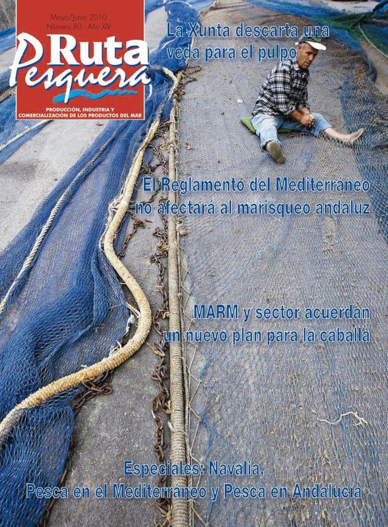 Revista 80