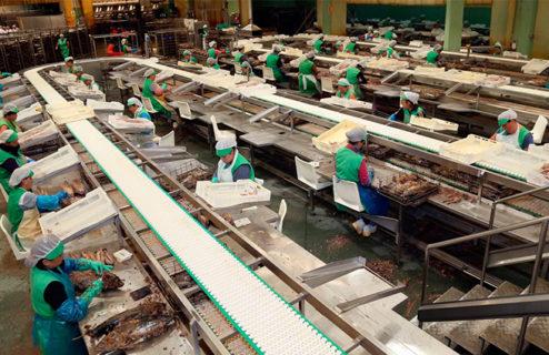 La empresa ACTEMSA es la primera pesquería de atún listado del Atlántico en someterse a la evaluación MSC