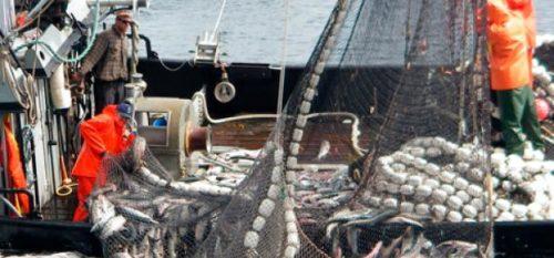 La UE propone un acuerdo multilateral para limitar los subsidios de pesca