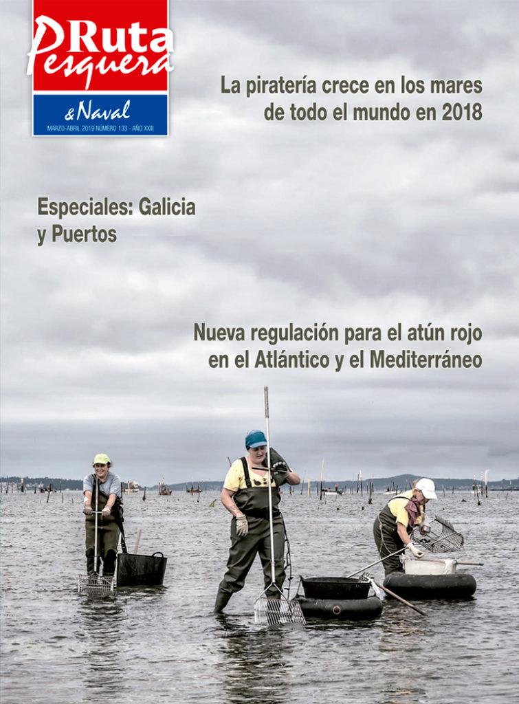 Revista 133