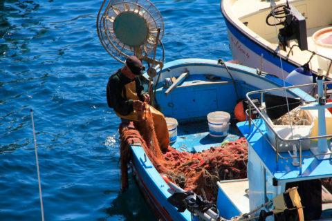 Medfish es un proyecto que trabaja para  mejorar la sostenibilidad de la pesca en el Mediterráneo