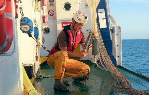 La población de anchoa juvenil se mantiene en el golfo de Bizkaia