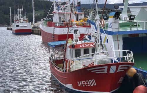 Aniversario Jornadas de Pesca de Celeiro: 25 años dando voz y visibilidad a la actualidad pesquera
