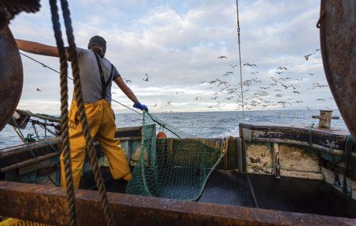 La Organización Mundial del Comercio no llegó a un acuerdo sobre las ayudas a la pesca